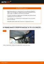 Darmowe instrukcje online jak odnowić Tarcze hamulcowe NISSAN X-TRAIL (T30)