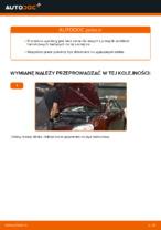 Jak wymienić przedni zacisk hamulcowy w VOLKSWAGEN POLO IV (9N_)