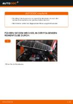MERCEDES-BENZ Bremszange hinten links wechseln - Online-Handbuch PDF