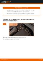 DRI 3153000 für Golf V Schrägheck (1K1) | PDF Handbuch zum Wechsel