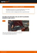 Wie Sie einen vorderen Bremssattel am VOLKSWAGEN POLO IV (9N_) ersetzen