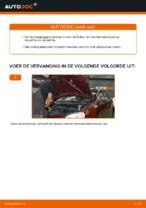 Handleiding VW POLO