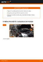 Výměna Olejovy filtr TOYOTA RAV4: zdarma pdf