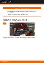 Sistem de franare manual de atelier online