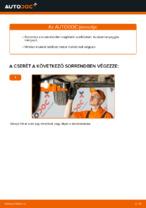 Hogyan cseréje és állítsuk be benzin Üzemanyagszűrő: ingyenes pdf útmutató