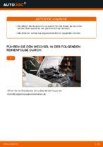 Reparatur- und Wartungsanleitung für VW Caddy 4 Kombi