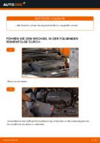Wie der Austausch des Motor-Keilrippenriemens bei OPEL CORSA C (F08, F68) -Autos funktioniert