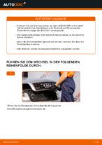 Wie Bremsscheibe AUDI A4 austauschen und anpassen: PDF-Anweisung