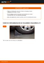 Tips van monteurs voor het wisselen van AUDI Audi A4 b6 2.0 Wiellager
