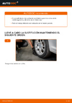 VW CADDY manual de solución de problemas