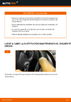 PDF manual sobre mantenimiento CADDY