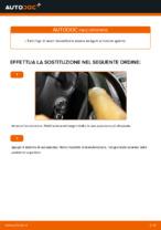 Sostituzione Spazzole tergicristallo VW CADDY: pdf gratuito