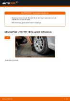 När byta Hjullagersats VW CADDY III Estate (2KB, 2KJ, 2CB, 2CJ): pdf handledning