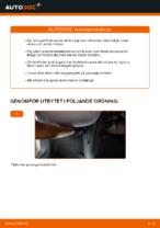 Laga Kupeluftfilter: pdf instruktioner för VW CADDY