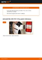 Laga Bränslefilter: pdf instruktioner för VW CADDY