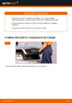 Jak vyměnit zadní brzdové destičky kotoučové brzdy na AUDI A4 B6