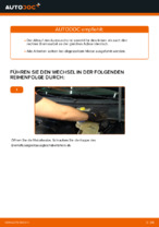 VW PASSAT Variant (3B6) Bremssattel: PDF-Anleitung zur Erneuerung