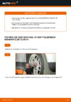 Wechseln von Radlagersatz VW PASSAT: PDF kostenlos