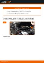 Výměna Zapalovaci svicka TOYOTA RAV4: online průvodce