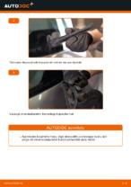 Automehaaniku soovitused, selleks et vahetada välja RENAULT Renault Scenic 2 1.5 dCi Soonrihm
