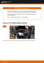 Schimbare Placute Frana TOYOTA RAV4: manual de intretinere si reparatii