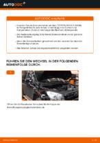 Beheben von Problemen mit TOYOTA Bremsscheiben beschichtet mit unserer Anweisung