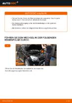 Wie Sie die hinteren Bremsbeläge am TOYOTA RAV4 III (XA30) ersetzen
