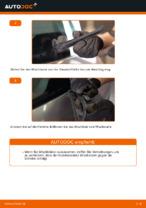 Wie Sie die hinteren Wischerblätter am RENAULT SCENIC II (JM) ersetzen