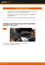 Tipps von Automechanikern zum Wechsel von TOYOTA Toyota RAV4 III 2.0 4WD (ACA30_) Bremsscheiben