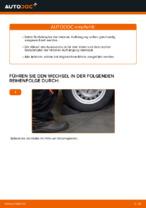 Wie Federbein OPEL ASTRA tauschen und einstellen: PDF-Tutorial