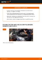 Filter Innenraumluft RENAULT LAGUNA 2007 | PDF Anleitung zum Wechsel