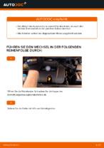 Empfehlungen des Automechanikers zum Wechsel von VW Golf 4 1.6 Querlenker