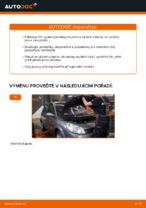 PDF návod na výměnu: Kabinovy filtr RENAULT
