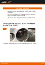 Radlager wechseln TOYOTA RAV4: Werkstatthandbuch