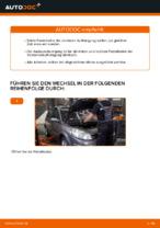 Schritt-für-Schritt-Anweisung zur Reparatur für Renault Scenic 3