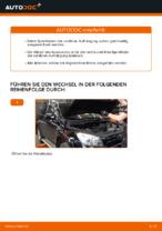 Wie Sie die vorderen Fahrwerksfedern am TOYOTA RAV4 III (XA30) ersetzen