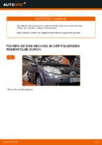PDF Wechsel Anleitung: Achslenker RENAULT SCÉNIC II (JM0/1_) hinten und vorne