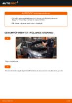 Gratis instruktioner online hur installerar man Luftfilter RENAULT SCÉNIC II (JM0/1_)