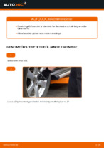 Montering Bärarm TOYOTA RAV 4 III (ACA3_, ACE_, ALA3_, GSA3_, ZSA3_) - steg-för-steg-guide