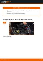 DIY-manual för byte av Länkarm hjulupphängning i RENAULT MEGANE II Saloon (LM0/1_)