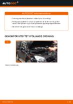 Hur man byter ut ett fjäderben fram på TOYOTA RAV4 III (XA30)