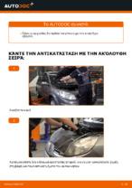 Εγχειρίδιο εργαστηρίου για Renault Scénic IV