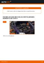 Wie hinten links Motorhalter tauschen und einstellen: kostenloser PDF-Tutorial