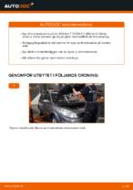 Steg-för-steg Renault Scenic 3 reparationsguide