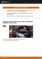 Tipps von Automechanikern zum Wechsel von RENAULT Renault Scenic 2 1.5 dCi Querlenker