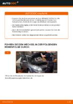 Wie Scheibenbremsen belüftet beim RENAULT SCÉNIC II (JM0/1_) wechseln - Handbuch online