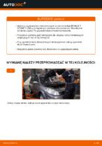 Darmowe instrukcje online jak odnowić Tarcze hamulcowe RENAULT SCÉNIC II (JM0/1_)