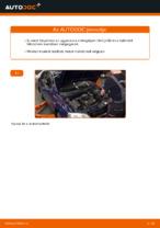 Műhely kézikönyv online