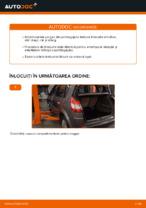 Cum se înlocuiesc amortizoarele pe gaz ale ușii portbagajului pe RENAULT SCENIC II (JM)