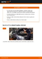 Schimbare Set discuri frana: pdf instrucțiuni pentru RENAULT SCÉNIC